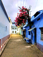 Freshly painted streets of Kallidaikurichi in preparation for Pongal