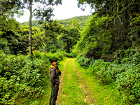 Our forest guide and the forest hike - Pampadum Shola National Park, Kerala