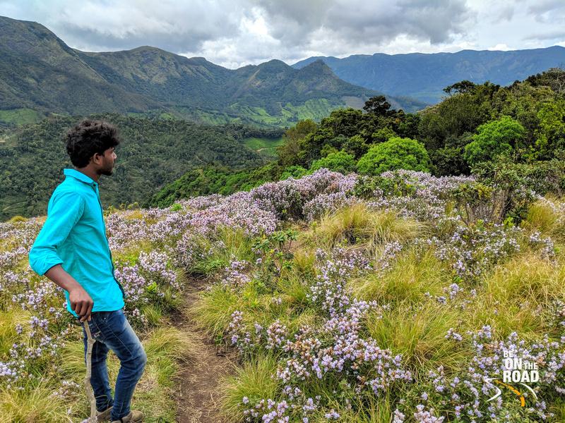 Admiring the Neelakurinji mountain view