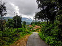A Malnad Countryside view during the monsoons