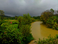 Beautiful monsoon atmosphere in Malnad, Karnataka