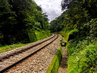 The iconic green railway track trek of Karnataka