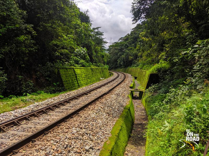 The iconic green railway track trek of Karnataka
