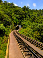 The scenic green railway route of Karnataka