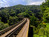 Untouched forests on the Sakleshpur railway track trek