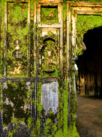 Moss takes over structure inside Nalknad Palace, Coorg