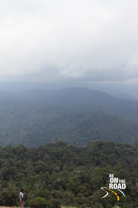 The misty views at Nallamudi Poonjolai, a famous view point near Valparai