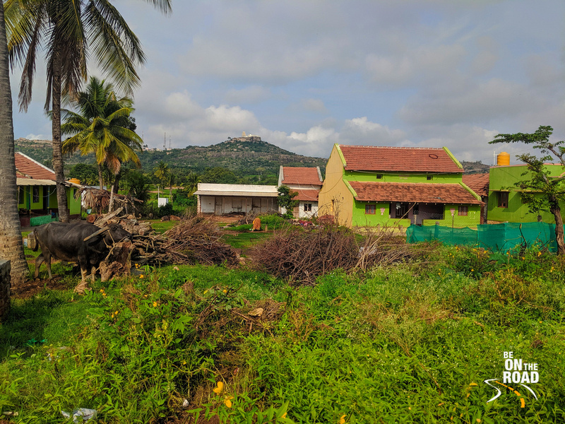 A rustic view of Melukote