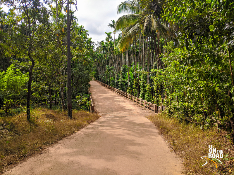 A beautiful countryside road in Uttara Kannada, Karnataka