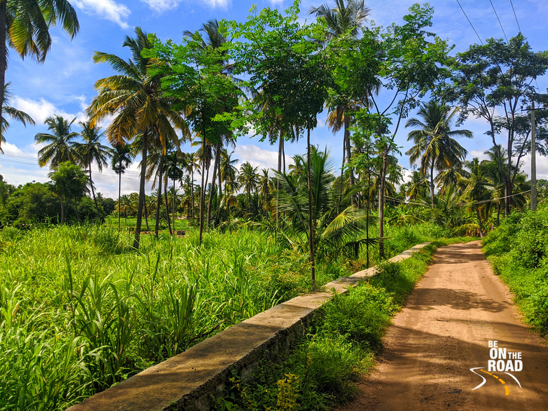 Countryside view at Dabbaguli