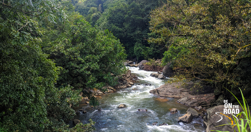 Stunning views that greet you on the Bisle Ghat highway