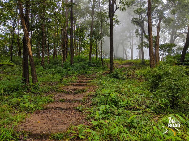 Mist covered trail at Magod Falls, Uttara Kannada, Karanataka