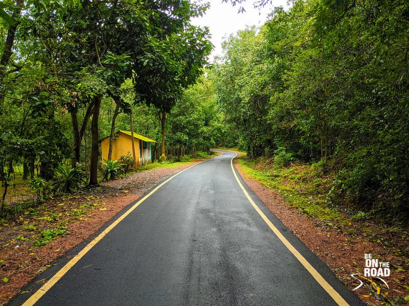 Lush greenery enroute Unchalli Falls, Karnataka
