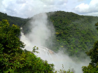 The thundering and mist covered Unchalli Falls during the monsoons