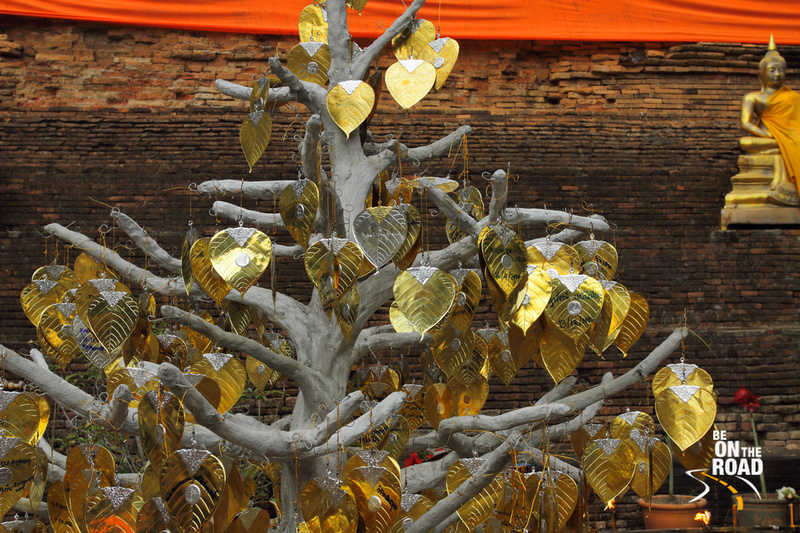Tree of golden leaves at Wat Chedi Luang, Chiang Mai, Thailand