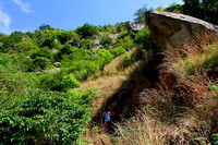 The thorny and bushy trekking path
