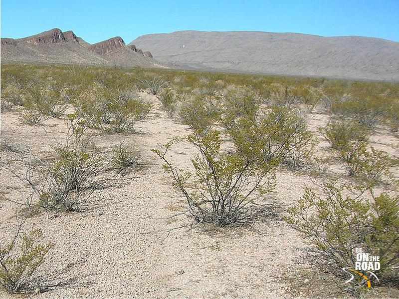 File:Chihuahuan Desert 01.jpg