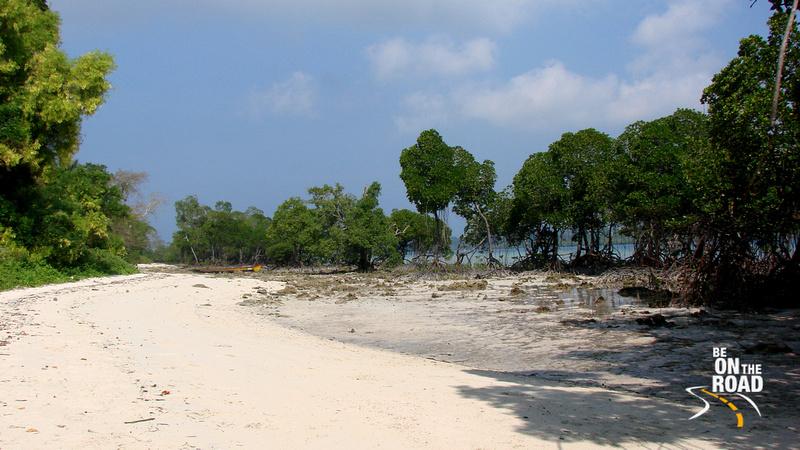 The mangove beach of Havelock Island