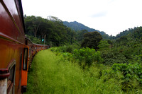 Heritage Train Journey - Colombo to the central highlands of Nanu Oya