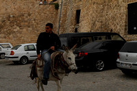 Garbage collection from on a donkey at Mardin, Turkey