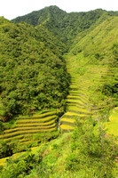 Beautiful rice terraces of Northern Philippines