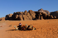 Camel Parking Lot - Wadi Rum, Jordan