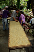 Peanut and Sesame Candy being produced at Taling Chan Floating Market, Bangkok