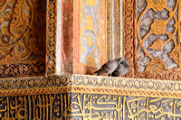 Loving Pigeon couple inside Akbar's Tomb, Agra, India