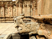 The Gargoyle, the monkey and the gorgeous sculptures at the Bhoga Nandeeswara Temple