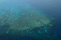 Shining Great Barrier Reef as seen from above