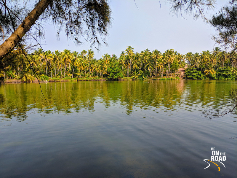 Kappil Beach - the tiny stretch of sand sandwiched between the backwaters and the Arabian Sea