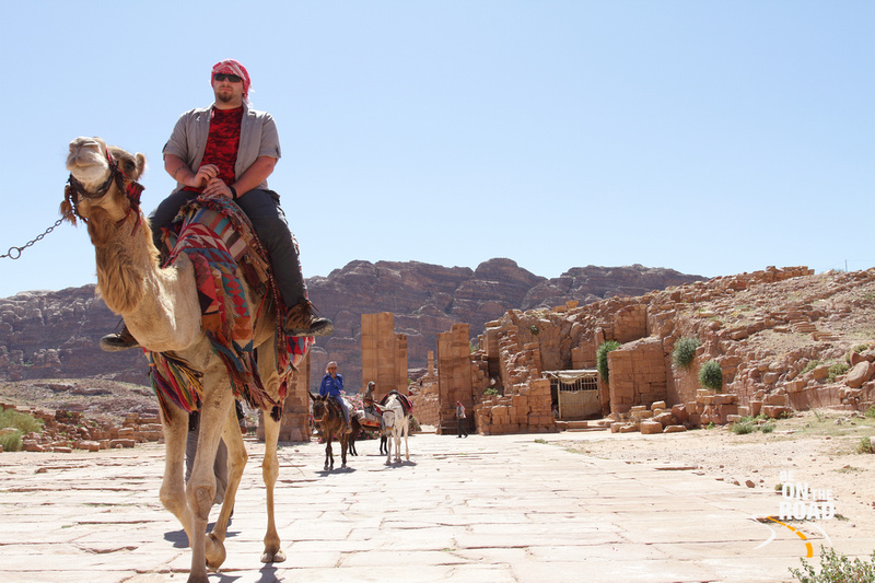 Exploring the beauty of Petra from on top a camel, Jordan