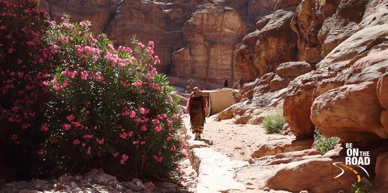 A walk through the rocks of Petra, Jordan