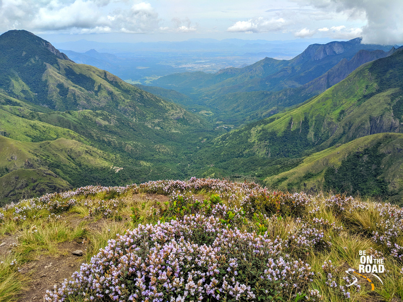 The Neelakurinji view of Yellapatty, Kerala