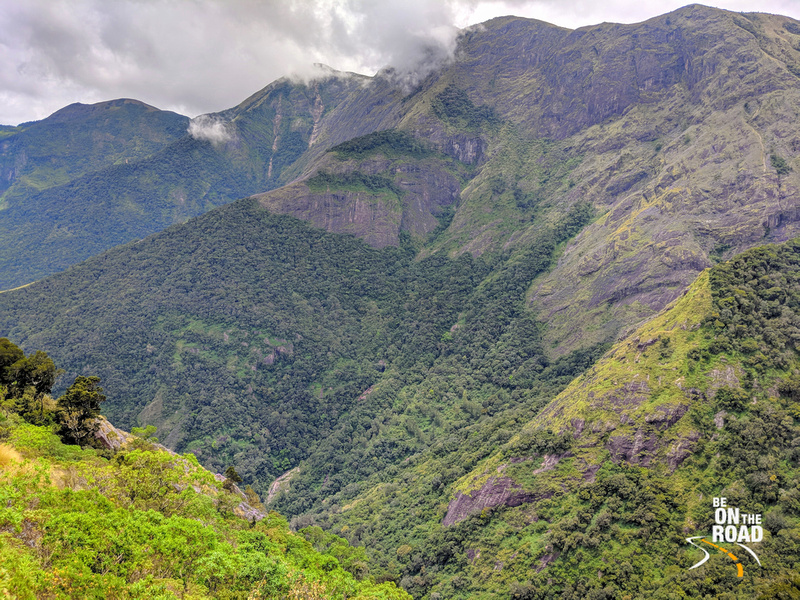 Shola Forests, Monsoon Clouds and the Western Ghats