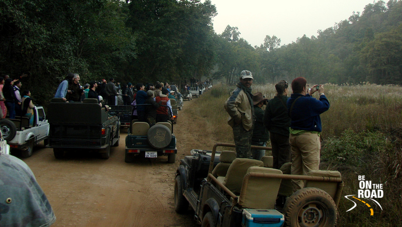Chaos in the name of tourism...making the WILD suffer at Bandhavgarh Tiger Reserve, Madhya Pradesh, India
