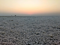 A winter morning sunrise from the White Rann Salt Desert