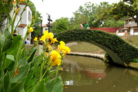 Victorian bridges, flowers, trees, birds and lots of nature on the San Antonio riverwalk