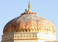 Langur resting place - Dome of Amber Fort, Jaipur