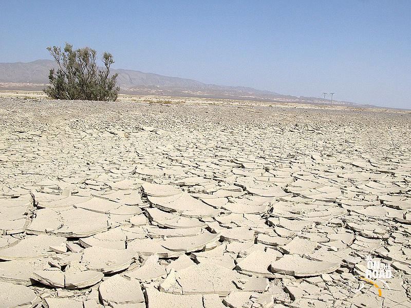 File:Karakum Desert.jpg