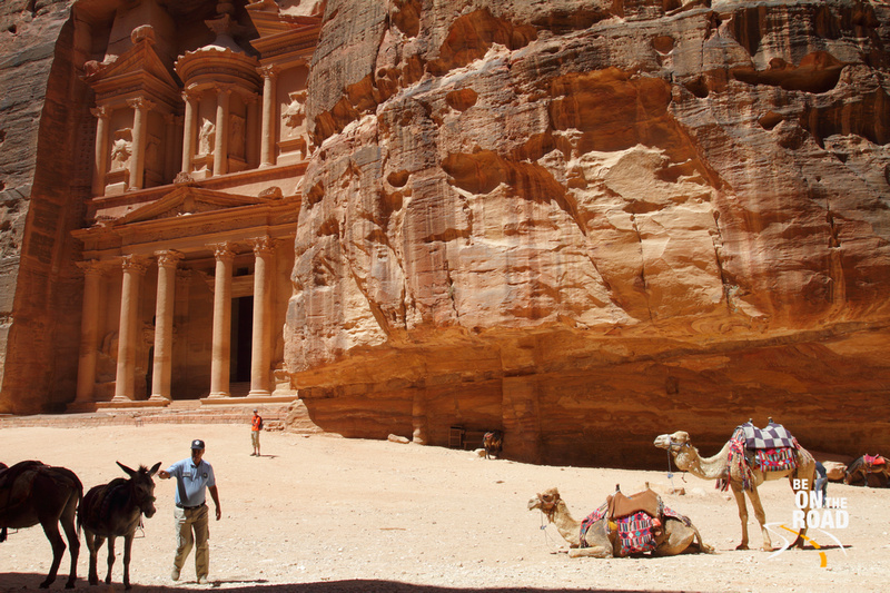 Donkeys, camels and the Petra Treasury